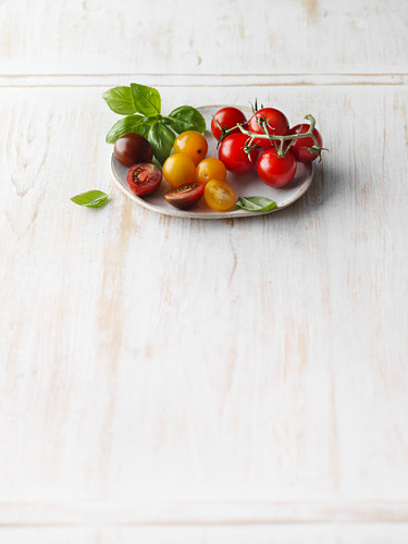 Colourful cherry tomatoes and fresh basil leaves