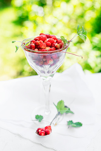 Wild strawberries in a crystal glass and on an old spoon