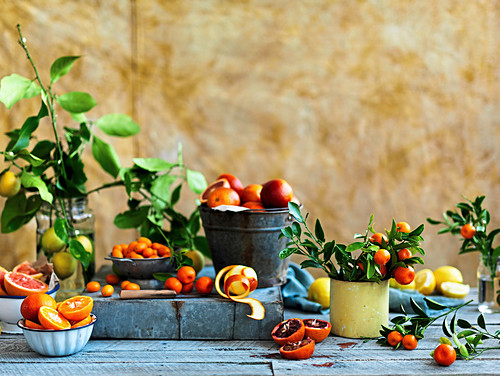 Stillleben mit Zitrusfrüchten