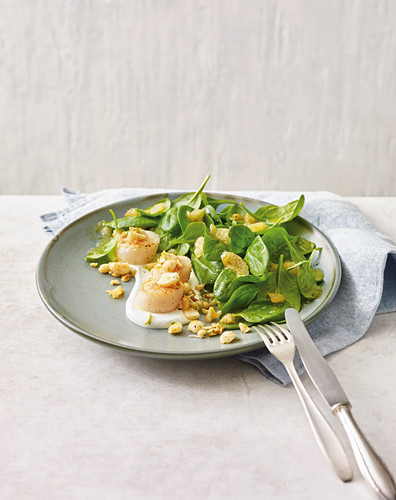 Scallops with lime, spinach and macadamia nut salad