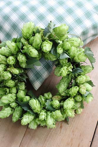 Wreath of hop flowers
