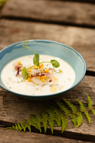 Potato, Cream and Corn Soup