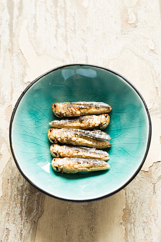 Edible, freeze-dried grasshoppers in a bowl