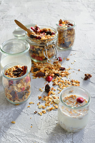 Muesli with milk, cranberries, dried fruits and nuts