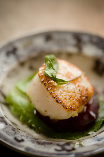 A scallop on beetroot with sage