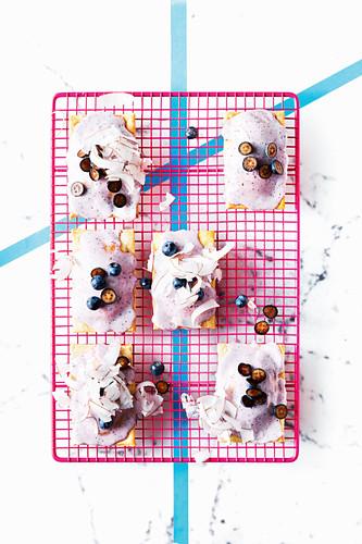 Vegan blueberry and nectarine pop tarts