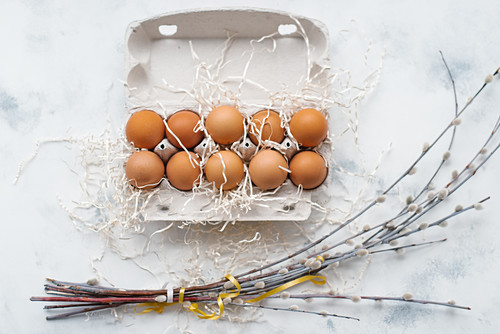 Eggs in an egg carton and bunches of catkins