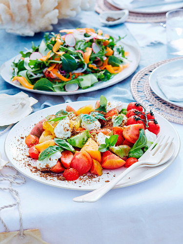 Tomatensalat mit Basilikum und Schafsmilchjoghurt und gemischter Salat