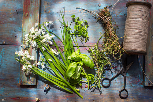 Basil, chives, mint, tyme and wild garlic