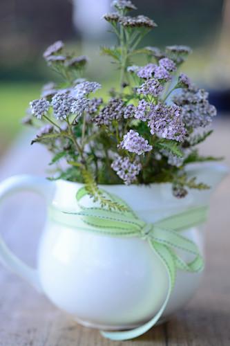 Yarrow in a ceramic jug