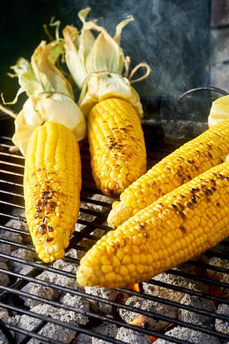 Corn Cobs on BBQ
