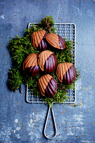 Bear claw biscuits with chocolate glaze