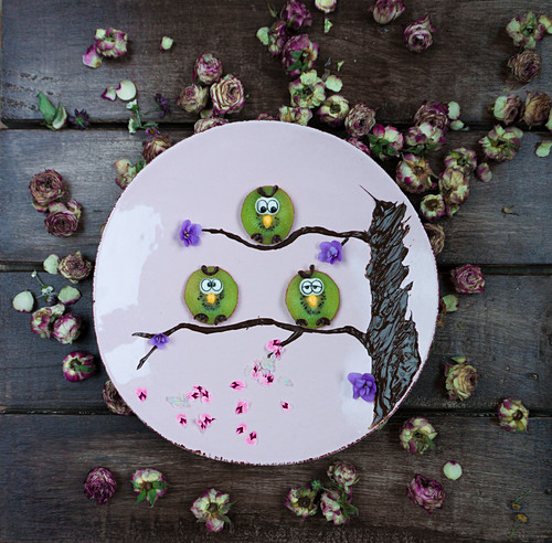 Kiwi owls decorated with fondant