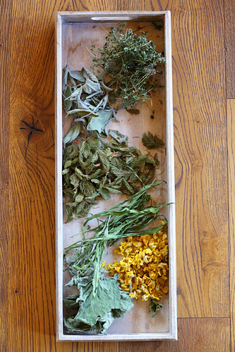 Tray of dried leaves for making homemade herbal tea