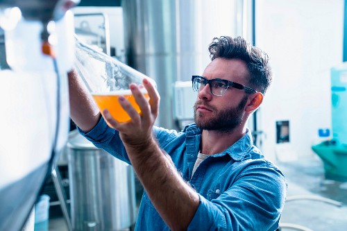 A beer brewer checking the quality of beer in a glass flask (USA)