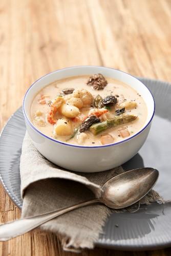 Leipziger Allerlei (regional German vegetable dish consisting of peas, carrots, asparagus, and morel mushrooms) with crayfish