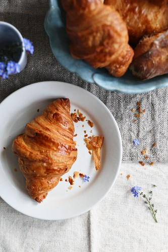 A croissant on a white plate (seen from above)