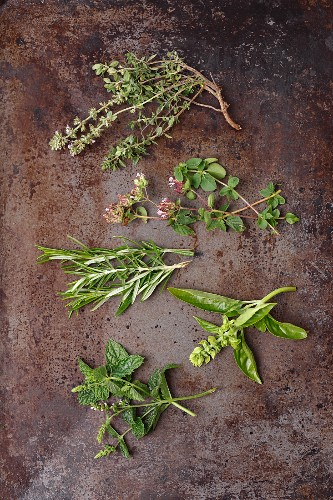 Fresh herb sprigs: thyme, oregano, rosemary, basil and mint