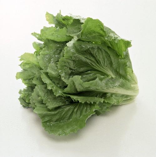 Head of Romaine Lettuce