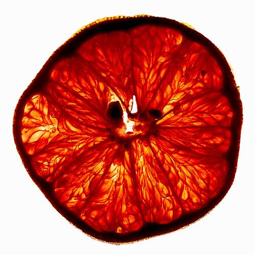 A backlit grapefruit slice