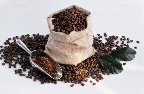 Coffee beans in sack and on scoop