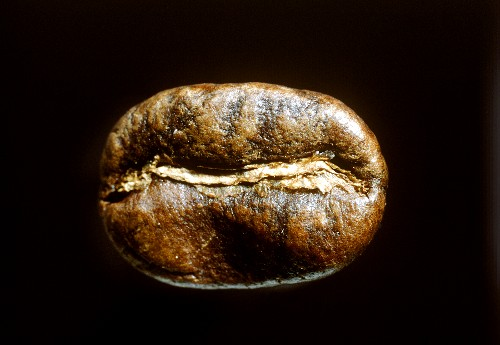 A single coffee bean on a black background