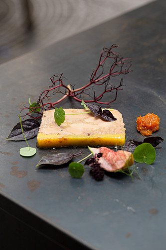 Goose liver terrine with fig and apricot
