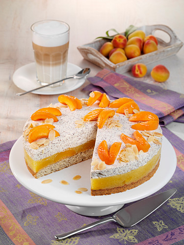 Apricot and poppyseed cake