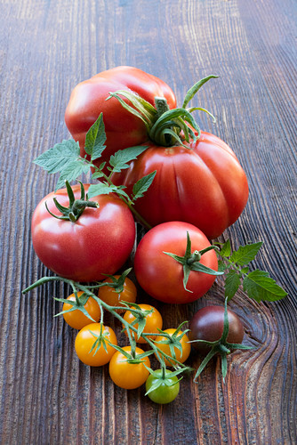 Various types of tomatoes on a wooden surface