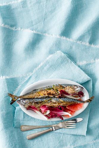 Grilled mackerel with pink grapefruit