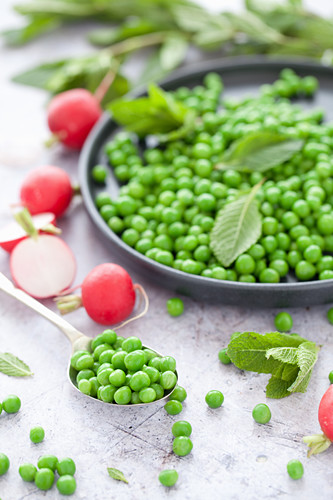 A Plate of Peas with Mint and Radish