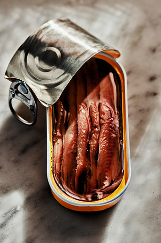 An opened tin of anchovies in oil