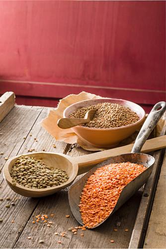 An arrangement of various lentils