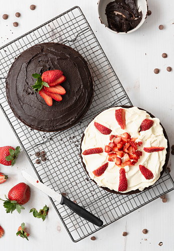 Preparation of chocolate dessert cake: one half spread with chocolate icing and the other covered in cream and cut strawberries