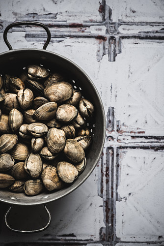 Fresh clams on a rustic tile