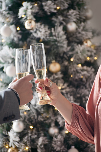 Toasting with champagne in festive surroundings
