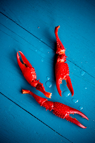 Red crayfish on a blue wooden surface (seen from above)