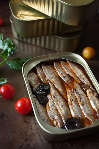 Sardinenbüchse mit Oliven