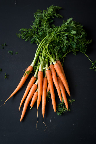 Fresh carrots with tops on a black background