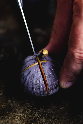 Cutting Fig