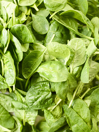 Fresh spinach leaves (full frame)