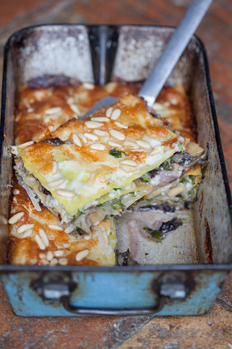Lasagne with radicchio and asiago cheese