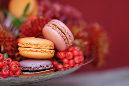 Macaroons (with passion fruit, cassis and blackberries) with hawthorn berries and chrysanthemums in the background