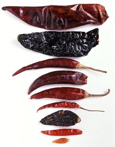 Dried Chilis
