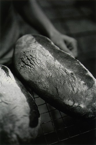 Freshly baked bread on baking rack (b and w photo)