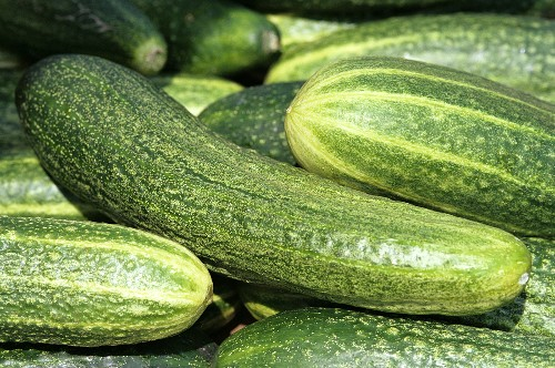 Cucumbers (filling the picture)