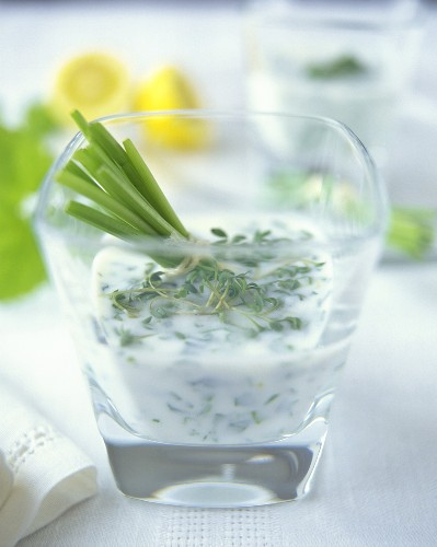 Soured milk sauce with herbs