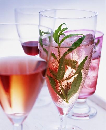 Home-made cherry liqueur, cherry aperitif & cherry champagne