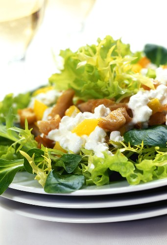 Salad leaves with chicken breast fillet & cottage cheese