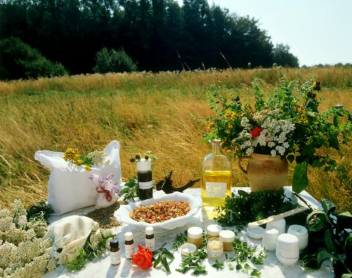 Still life with herbal and natural products in a meadow